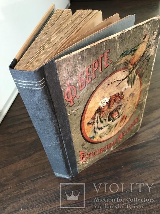 1911 Ф. Берге. Иллюстрированная Естественная история. Животные Растения Минералы, фото №13