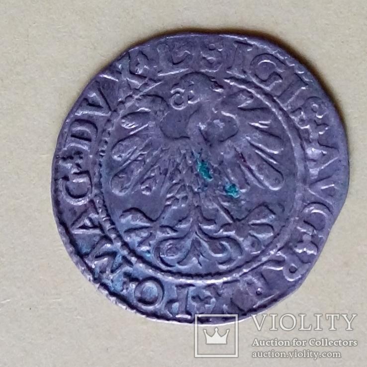 Полугрош Литва 1559 ВКЛ Всадник, фото №4