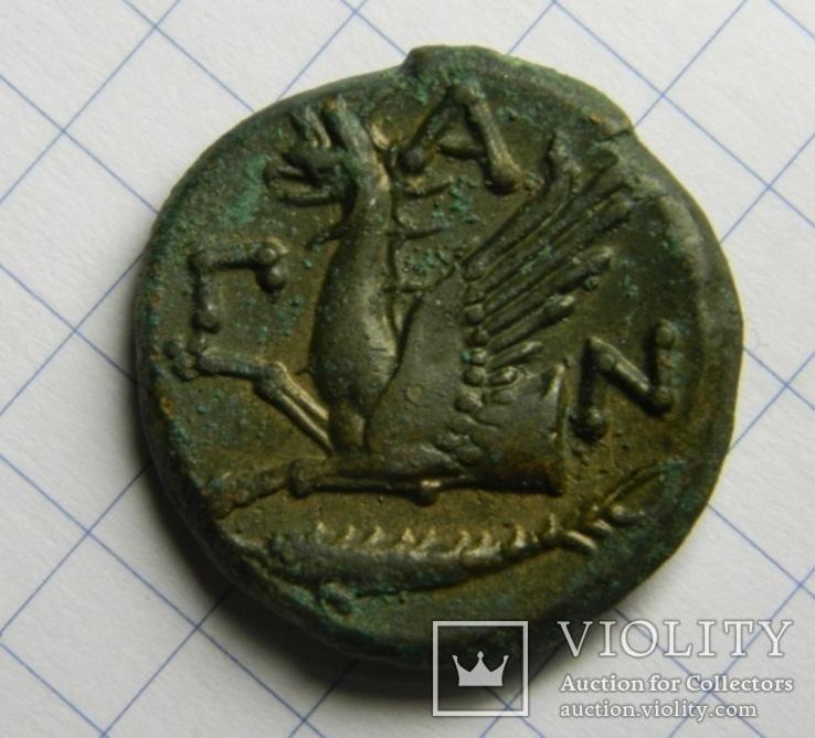 Пантикапей, Грифон/Сатир, Тетрахалк, 314-310 гг до н.э.