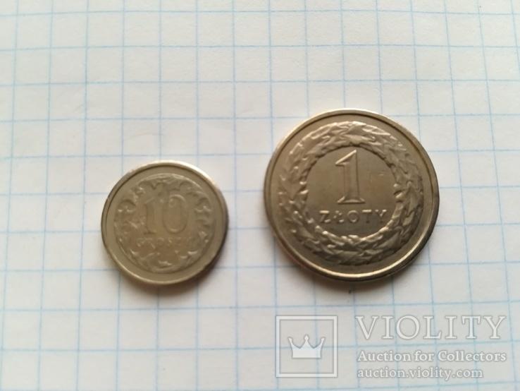 Монети 10 Грош і 1 злотий, фото №3