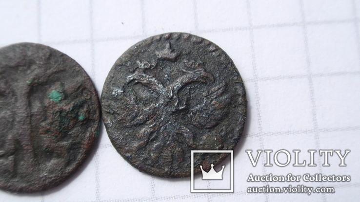 Полушки 1720 год  разные, фото №5