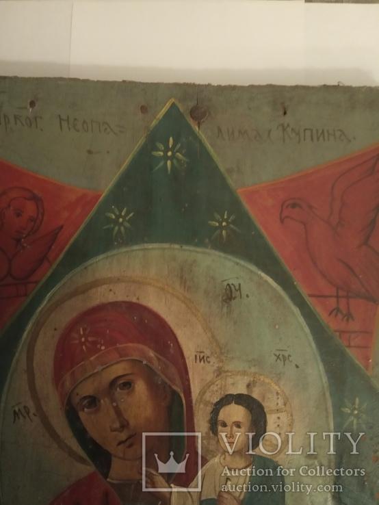 Матерь Божья Неопалимая Купина, фото №3