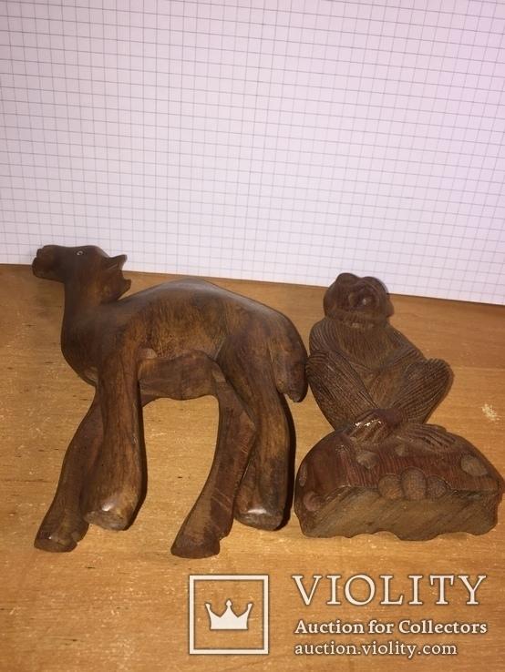 Обезьяна, верблюд, фото №6