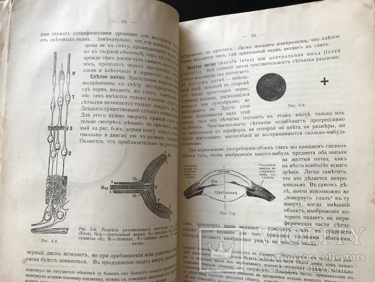 1911 Уильям Джэмс. Психология, фото №5