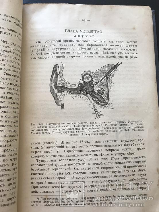 1911 Уильям Джэмс. Психология, фото №6