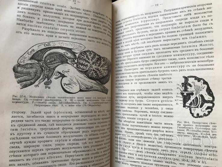 1911 Уильям Джэмс. Психология, фото №8