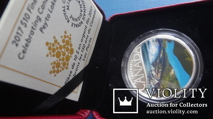 10  долларов  2017  Канада озеро Пейто  серебро, фото №2