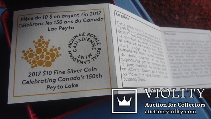 10  долларов  2017  Канада озеро Пейто  серебро, фото №8