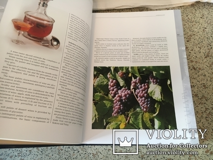 Коллекционные вина НПАО МАССАНДРА. Подарочное издание. Большой формат., фото №5