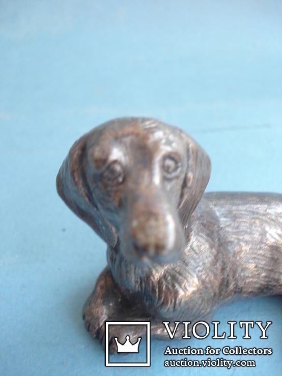 Статуэтка собаки, серебро., фото №5