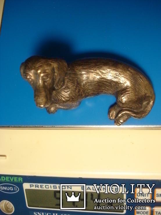 Статуэтка собаки, серебро., фото №8