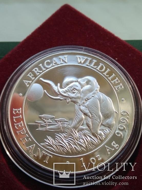 Слон Сомали 100 шиллингов  2016 г. 1oz 999.9 пробы унция Африканский слон, фото №2
