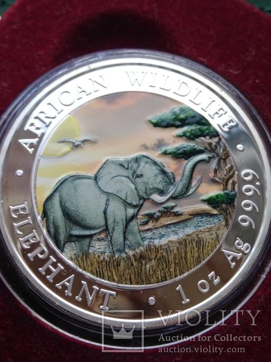 Слон Сомали 100 шиллингов 2019 г. 1oz 999.9 пробы унция Африканский слон, фото №3
