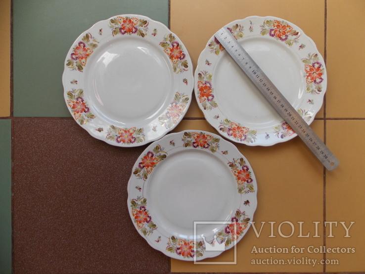 3 (три) тарелки. Коростнь 1953-57 гг. Авторская роспись., фото №3