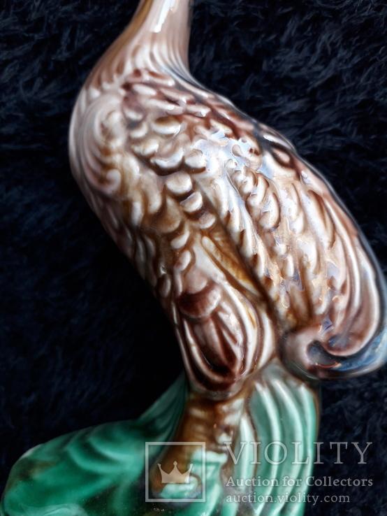 Пташка, фото №3