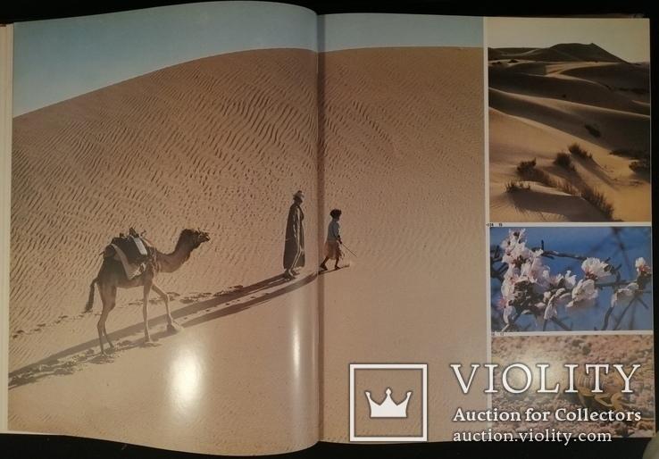 Книга про Синай, Бено Ротенберг Хельфрід Вайер, На Англійській 1979р., фото №7