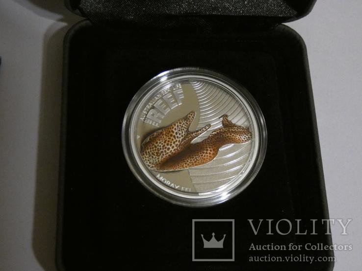 Морская жизнь Австралии - Мурена - серебро, 50 центов, фото №3