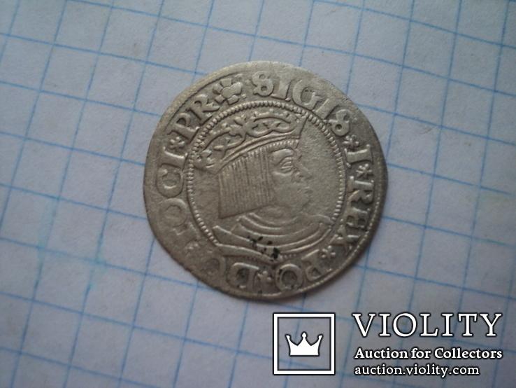 Гданьский грош 1531 г, фото №2