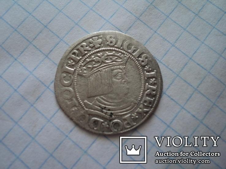 Гданьский грош 1531 г, фото №3