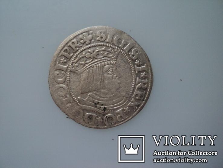 Гданьский грош 1531 г, фото №4