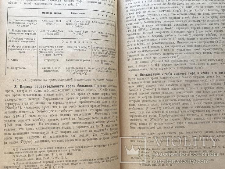 1920 Одесса. Одесский сборник по сыпному тифу, фото №9