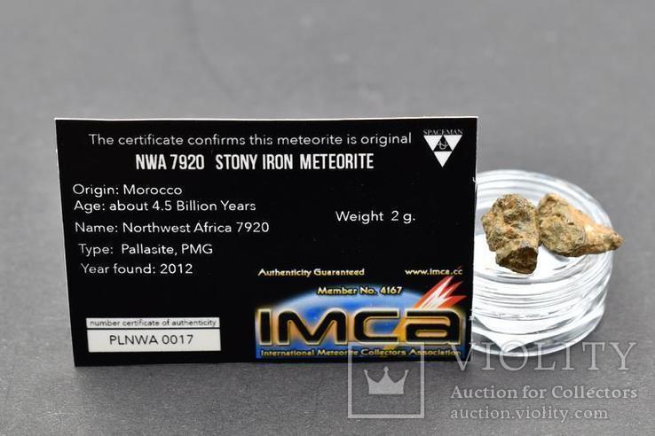 NWA каменный метеорит, обычные хондриты, для коллекционеров, фото №4