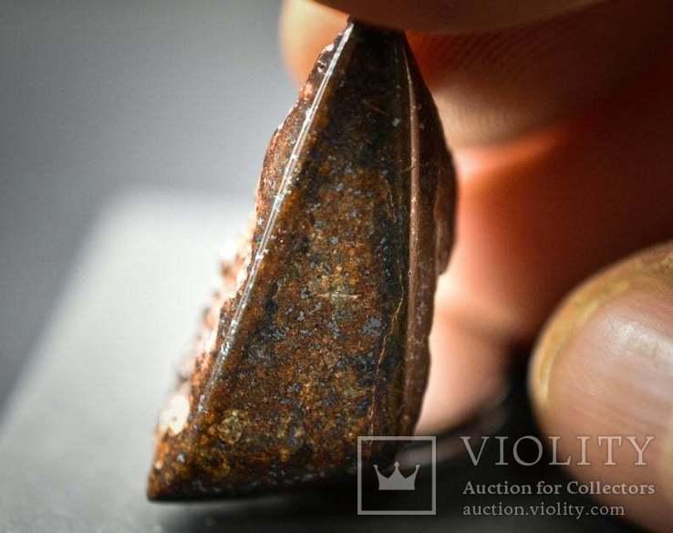 NWA каменный метеорит, обычные хондриты, Сахара, для коллекционеров, фото №3
