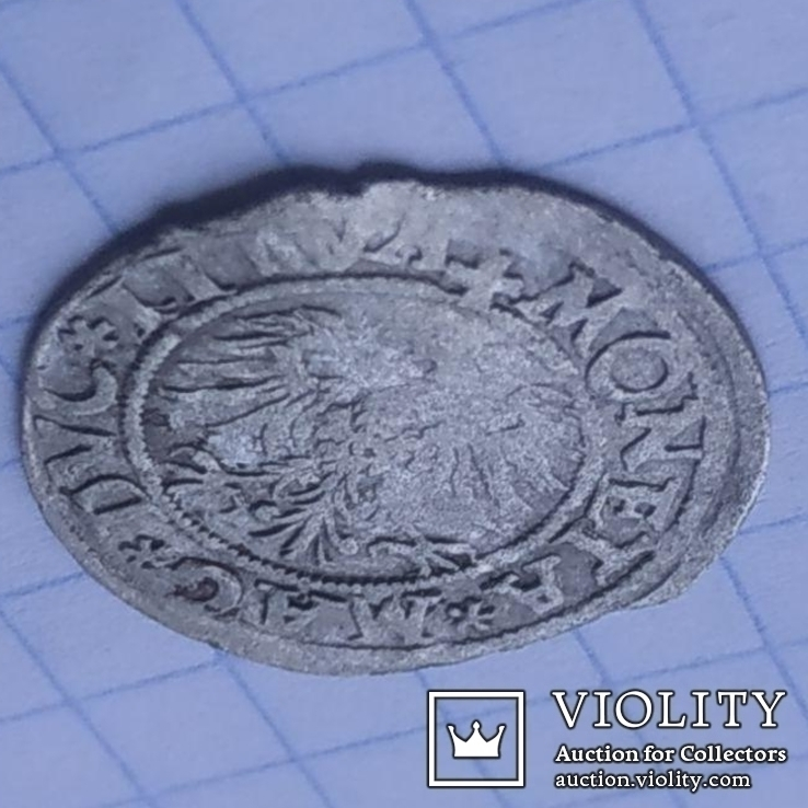 Полугрош 1545 г (R7), фото №2