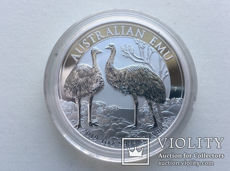 Страус Эму 2019 Австралия, фото №2