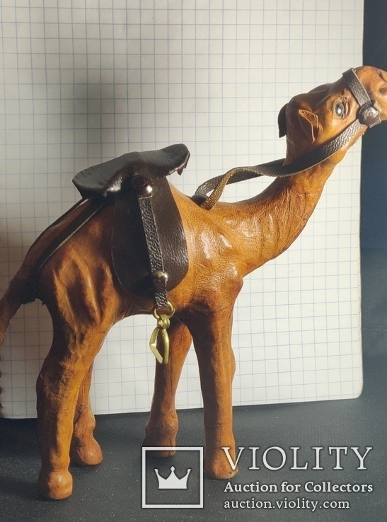 Верблюд (кожа), фото №4