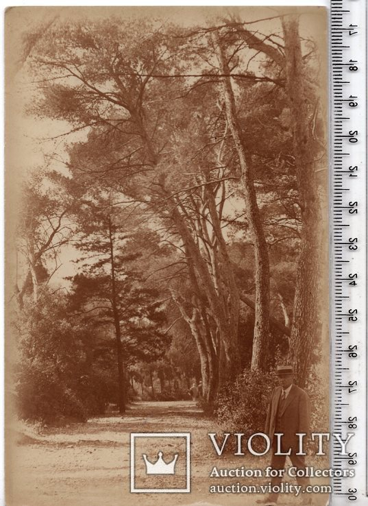 Старинная открытка. До 1945 годa. Разное. (3), фото №2