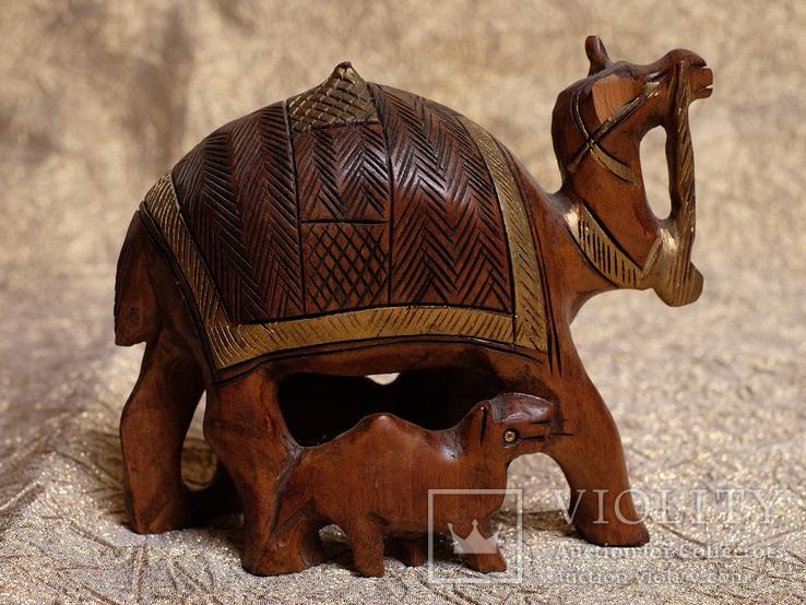 Верблюд. Сандаловое дерево., фото №4
