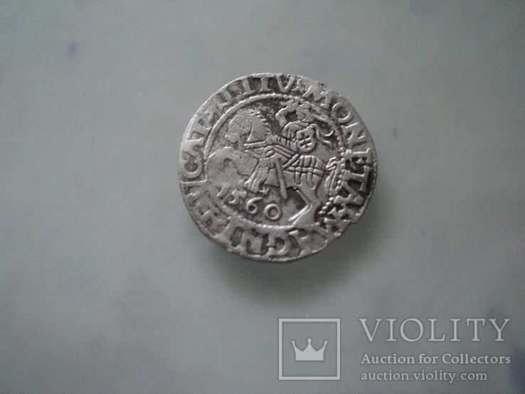 Полугрош 1560, фото №2