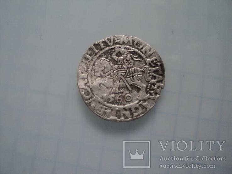 Полугрош 1560, фото №4