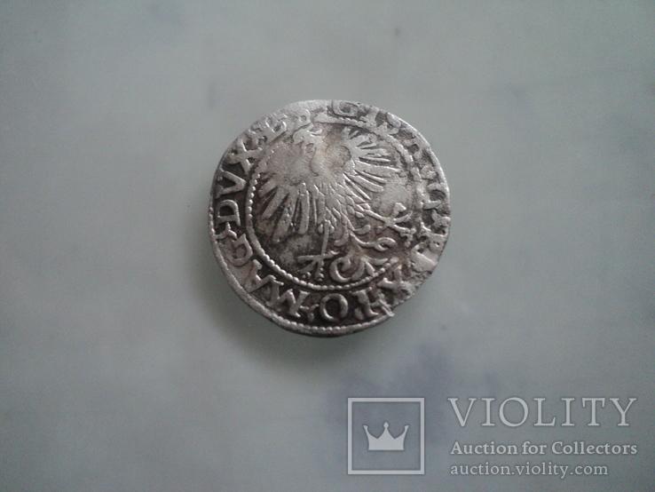 Полугрош 1560, фото №5