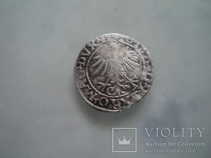 Полугрош 1560, фото №6