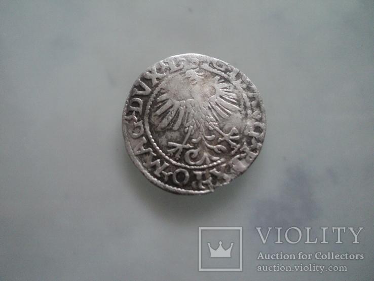 Полугрош 1560, фото №7
