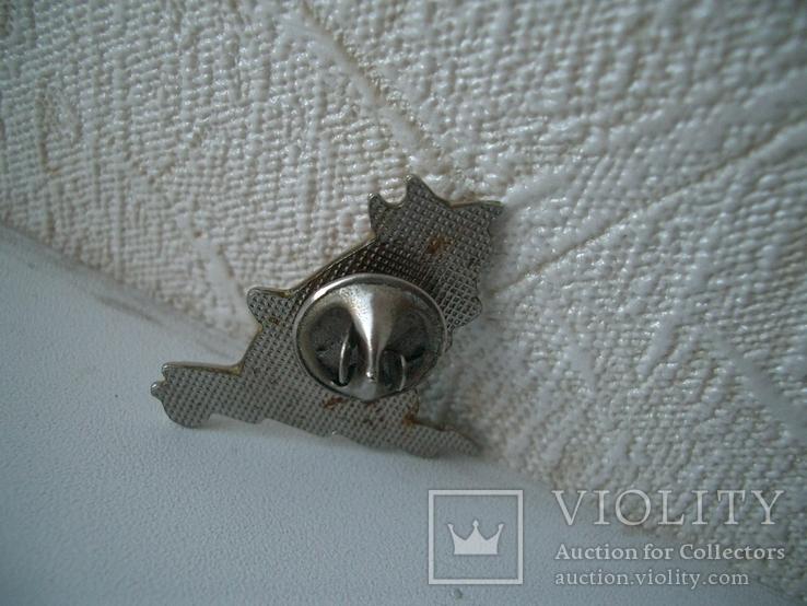 Значок  виндсерфинг, бронза,эмаль, спорт,вероятно прибалты, фото №4