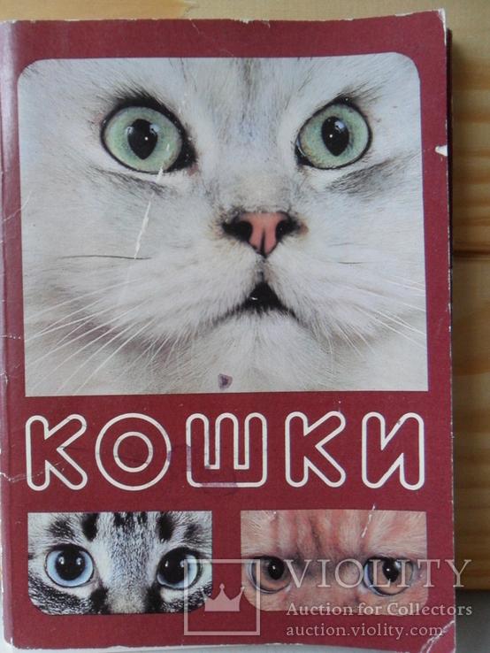 Набор открыток Кошки., фото №2