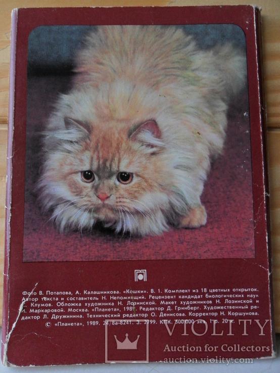Набор открыток Кошки., фото №6