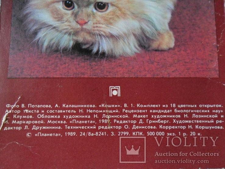 Набор открыток Кошки., фото №7