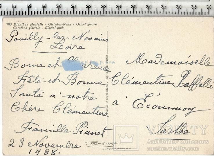 Старинная открытка. 1938 год. Разное.(3), фото №3