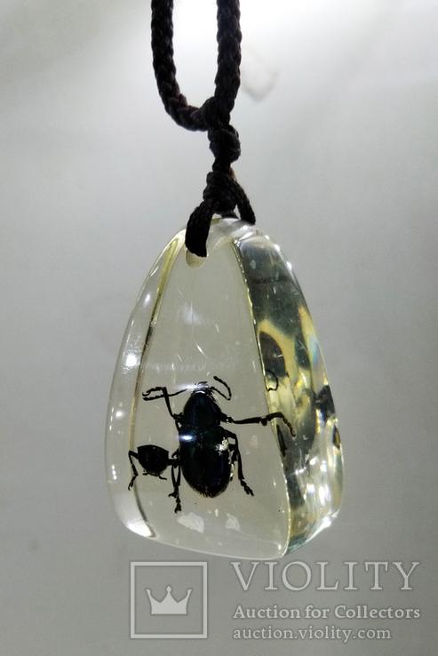 Кулон жуки в эбоксидке, на шнурке, фото №5