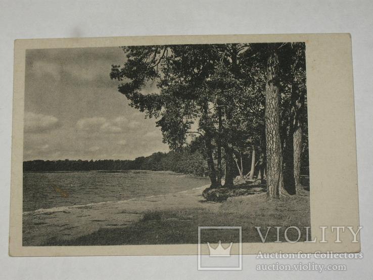 Открытка 1910-1950 годы.  Лейпциг ДТВ №116, фото №3