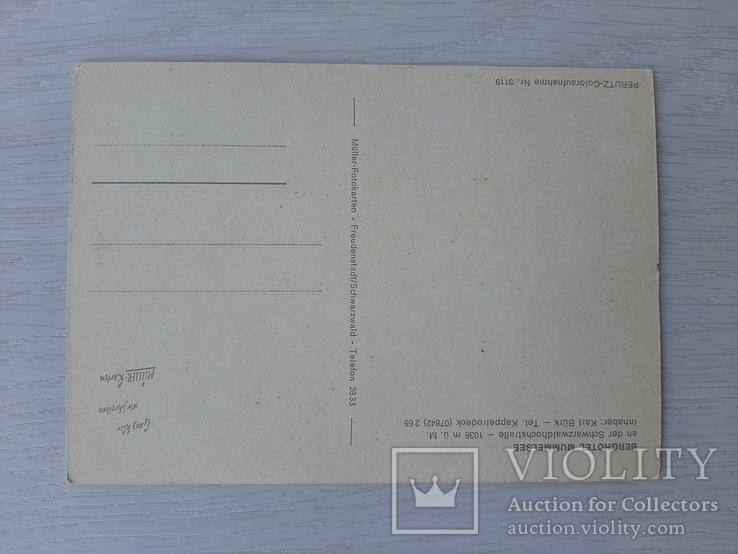 Немецкая ретро открытка (8), фото №3