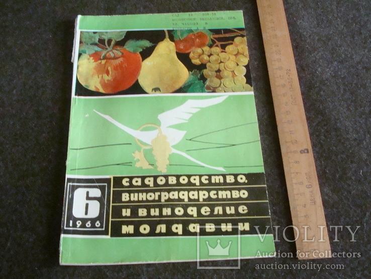 Садоводство, виноградарство и виноделие Молдавии 6/1966, фото №2