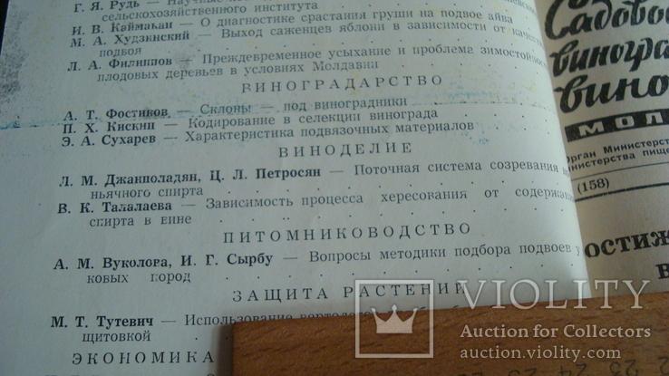 Садоводство, виноградарство и виноделие Молдавии 6/1966, фото №4