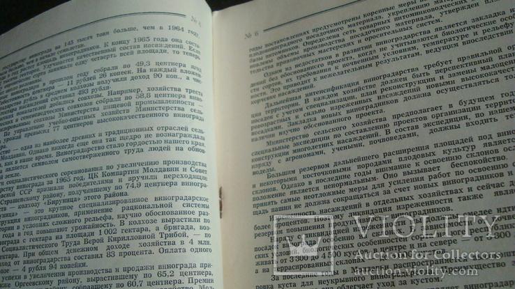 Садоводство, виноградарство и виноделие Молдавии 6/1966, фото №5