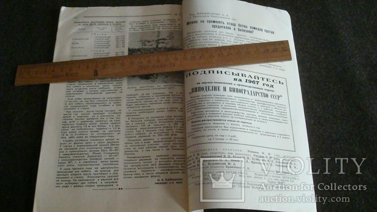 Садоводство, виноградарство и виноделие Молдавии 9/1966, фото №5
