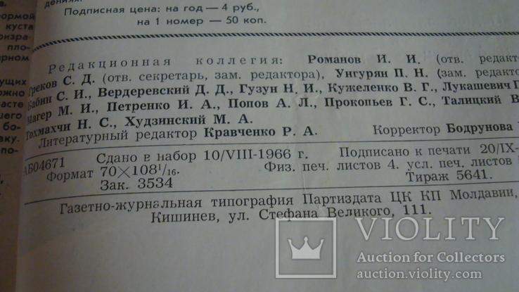 Садоводство, виноградарство и виноделие Молдавии 9/1966, фото №6